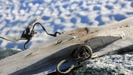 Viking Age Ski Norway 2