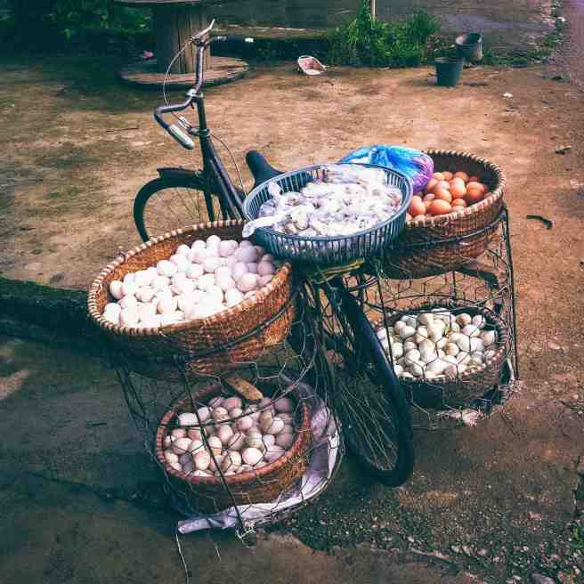 eggbike