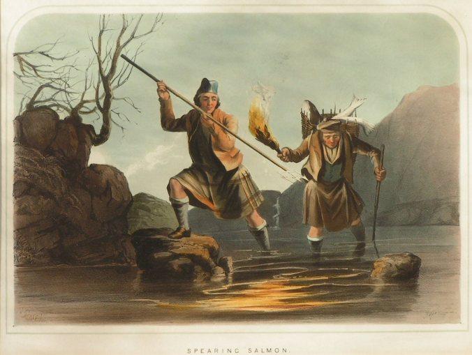 Spearing Salmon