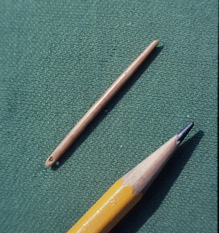 11,000 year old bone needle from the Horn Rock Shelter, Texas.