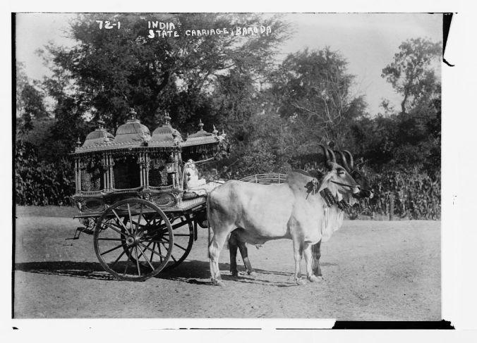 Sacred bullocks before state carriage - Baroda.