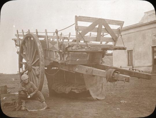 Camp Cart