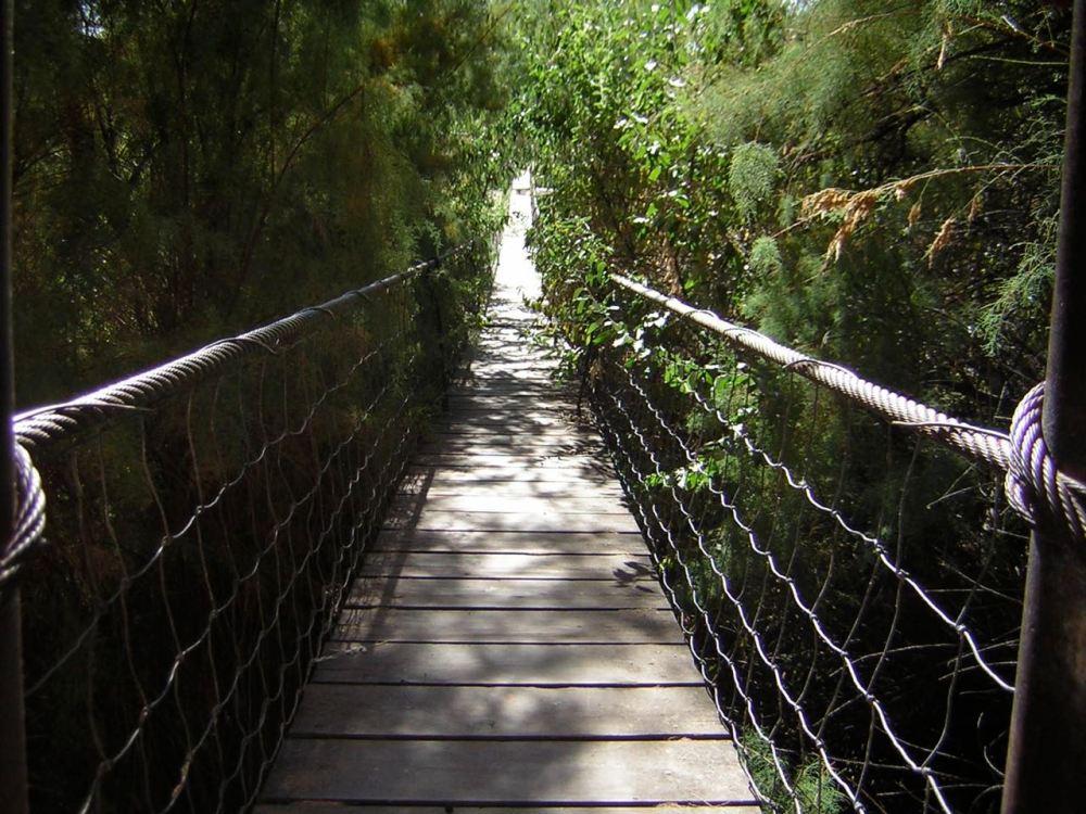 indiana-jones-bridge